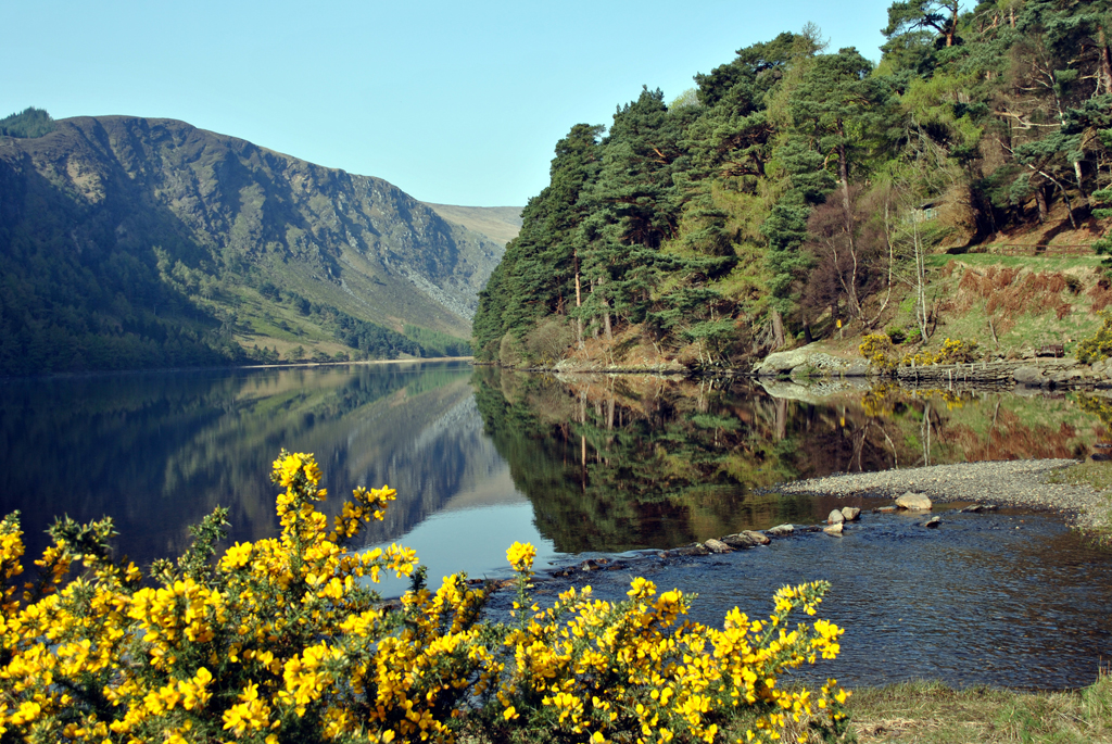 Day Tour of Wicklow, Glendalough