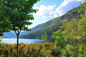 Kilkenny, Wicklow & Glendalough Tour From Dublin
