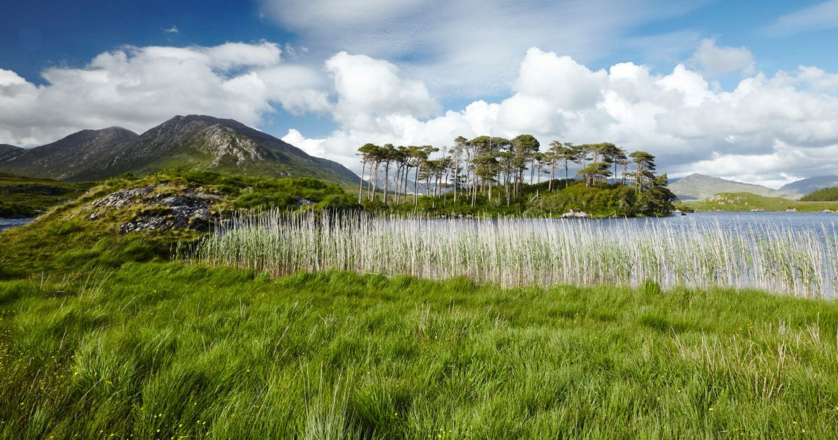 Connemara - Derryclare