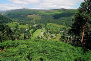 Glendalough - Derrybawn