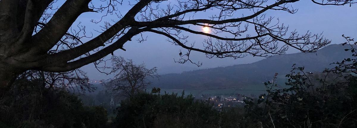 Full Moon Walk, Wicklow