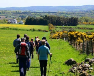 Walking the Wickow Way