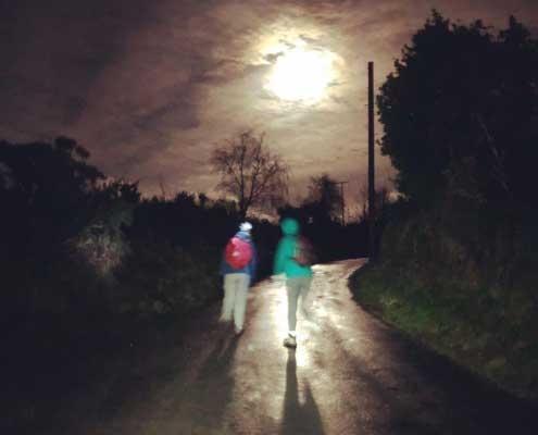 Full Moon Walks