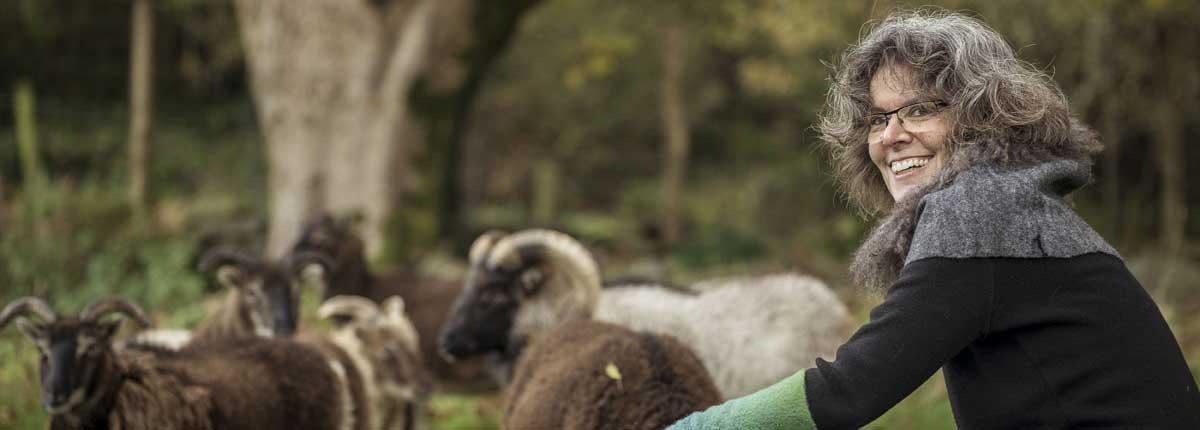 The Sheeps Head Way