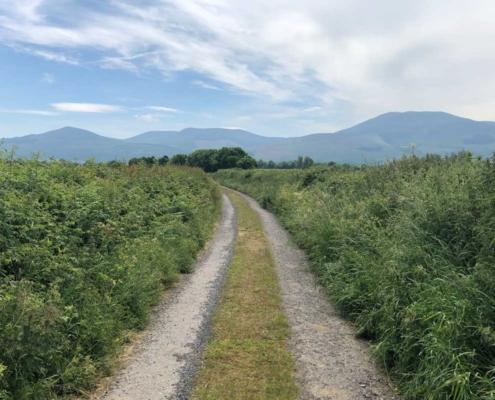 St. Declan's Way